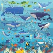 Underwater Scene Paper - Fish Are Friends - Carta Bella - PRE ORDER