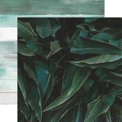 Ombre Paper - Lily & Moss - KaiserCraft