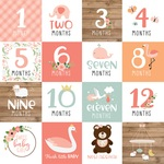 Milestone Cards Paper - Baby Girl - Echo Park