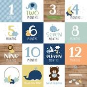 Milestone Cards Paper - Baby Boy - Echo Park