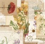 Botanical Journal Paper - Botanical Journal - Bo Bunny