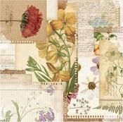 Botanical Journal Paper - Botanical Journal - Bo Bunny