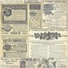 Catalog Paper - Botanical Journal - Bo Bunny