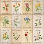 Garden Paper - Botanical Journal - Bo Bunny