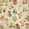 Observe Paper - Botanical Journal - Bo Bunny