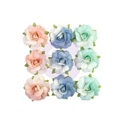 Vernazza Flowers - Capri - Prima
