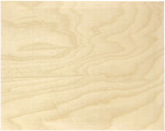 "Baltic Birch Beveled Edge Surface 8""x10"""