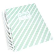 Mint Stripe Canvo Journal - Catherine Pooler