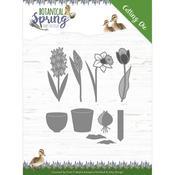 Bulbs & Flowers Die - Botanical Spring - Find It Trading