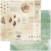 Triton's Shell Paper - Vintage Artistry Shore - 49 And Market