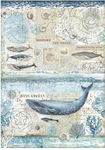 History Of Whale Rice Paper A4 - Arctic Antarctic - Stamperia
