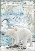 Polar Bears Rice Paper A4 - Arctic Antarctic - Stamperia