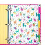 Color Wash Carpe Diem 5-Subject Dividers Reversible - Pukka Pads