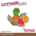 Tropical Fruit Dies 3.4 X 2.9 - Cottage Cutz