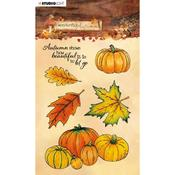 NR. 478 - Studio Light Wonderful Autumn Clear Stamps