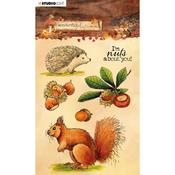 NR. 479 - Studio Light Wonderful Autumn Clear Stamps