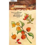 NR. 481 - Studio Light Wonderful Autumn Clear Stamps