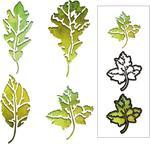 Leaf Print Thinlits Dies by Tim Holtz - Sizzix