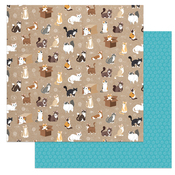 Soft Kitty Paper - Cat Lover - Photoplay - PRE ORDER