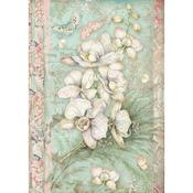 White Orchid Rice Paper A4 - Orchids & Cats - Stamperia - PRE ORDER