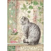 Cat Rice Paper A4 - Orchids & Cats - Stamperia - PRE ORDER