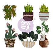 Cactus Flowers - Golden Desert Collection - Prima