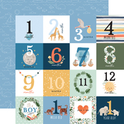 Milestone Journaling Cards Paper - Welcome Baby Boy - Echo Park