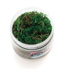 Color Pour Resin Wood Moss Mix In - American Crafts