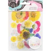Color Pour Resin Wood Acetate Flowers Mix In - American Crafts