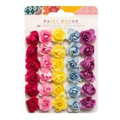 Wonders Paper Flowers - Paige Evans