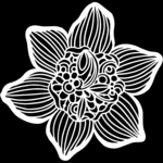 Cupped Daffodil 12x12 Stencil - The Crafters Workshop