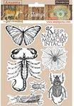 Butterfly Rubber Stamps - Amazonia - Stamperia