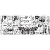 Entomology Collage Paper - Tim Holtz Idea-ology
