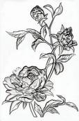 Mini Roses 3-D Embossing Folder by Tim Holtz - PRE ORDER