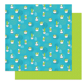 Gracias Paper - Snail Mail - Photoplay - PRE ORDER