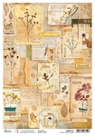 Book Of Dried Flowers A4 Rice Paper - Sign of the Times - Ciao Bella