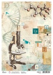 Science A4 Rice Paper - Sign of the Times - Ciao Bella - PRE ORDER