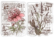 Botanical Postcards Clear Stamps - Sign of the Times - Ciao Bella