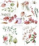 Sharon Ziv Orchidea Transfers - Prima