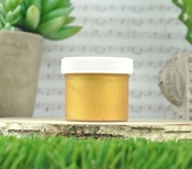 Gold Stencil Paste - Lawn Fawn