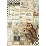 Owls Rice Paper - Alchemy - Stamperia - PRE ORDER