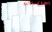 Notebook Papers